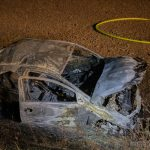 Fahrzeug geht nach Wildunfall in Flammen auf